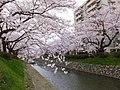 Marunouchi, Toyama, Toyama Prefecture 930-0085, Japan - panoramio.jpg