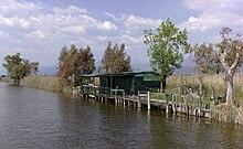 Zona paludosa antistante il lago