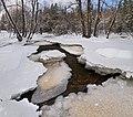 Matarinkoski groves in winter, Vantaa, Finland, 2021 February.jpg