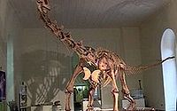 Maxacalissauro.jpg