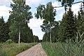 Meža ceļš, Valgundes pagasts, Jelgavas novads, Latvia - panoramio (4).jpg