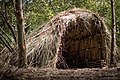 Mesolithic Hut.jpg