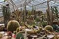Mexikohaus, Jardín Botánico, Múnich, Alemania 2012-04-21, DD 02.JPG
