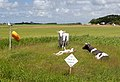 Midden Eierland, Dit Eiland is Coronavrij IMG 6064 2020-06-07 13.11.jpg