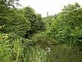 Millpond, Ramsden Mills, Golcar - geograph.org.uk - 503305.jpg