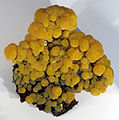 Mimetite, da s.pedro corallitas, chihuahua, mex.JPG