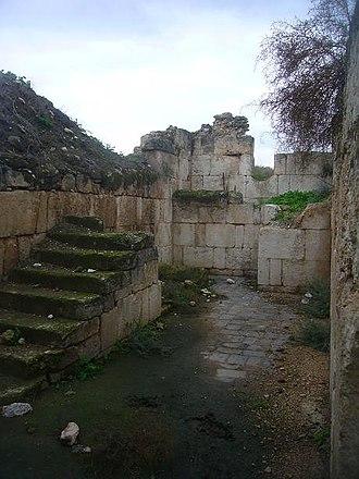 Khirbat al-Minya - The ruins of the Minya palace, 2009