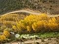 Mirador de La Galiana - panoramio.jpg