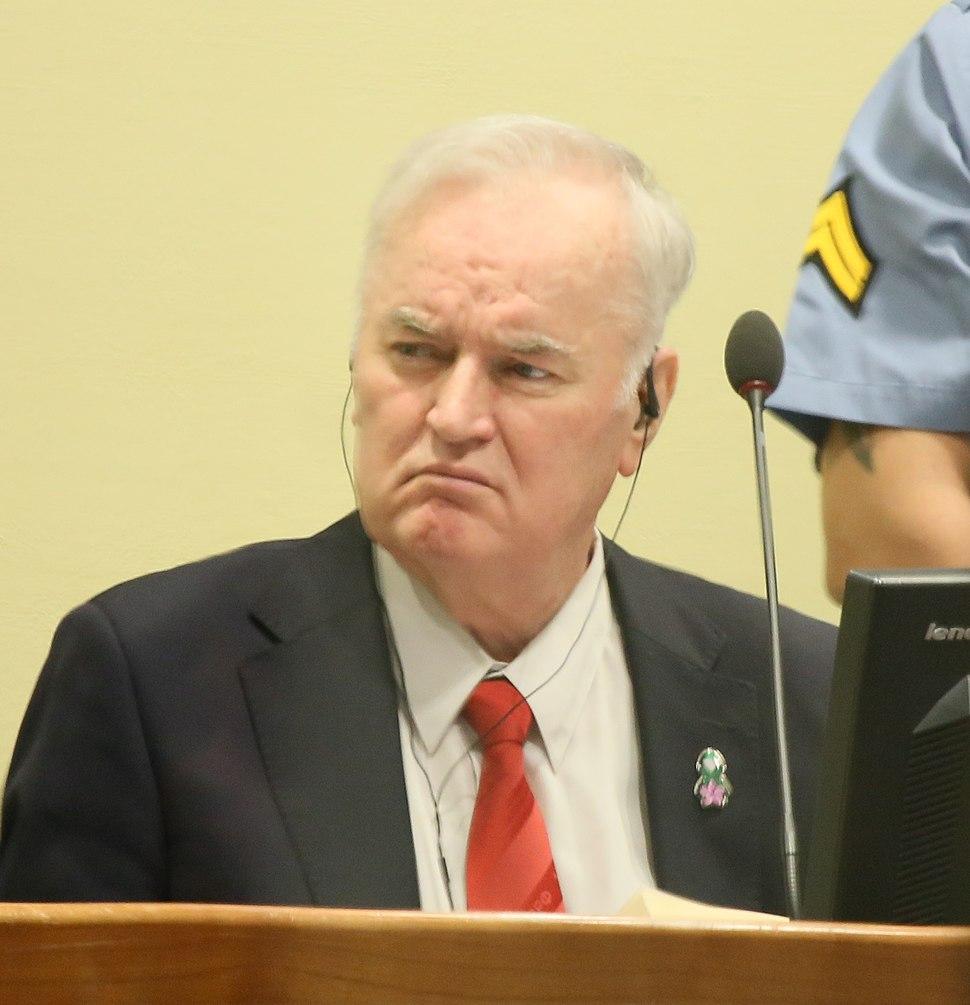 Mladić Trial Judgement (crop)