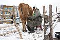 Mongolia 095.JPG