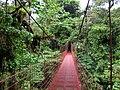 Monteverde puente.jpg