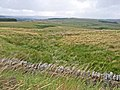 Moors above Greenhaugh - geograph.org.uk - 213366.jpg