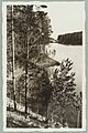 Näkölinja Harjutie–Valkialampi–Punkaharjun ja Takaharjun välinen kannas, 1910s PK0228.jpg