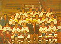 NICE HC 1985-1986.jpg