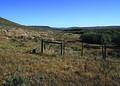 NRCSMT01032 - Montana (4913)(NRCS Photo Gallery).jpg