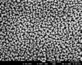 Nano-butterflies, nano-stars and nano-snowflakes (3 c).tif