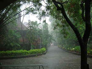 National Film Archive of India - Old NFAI building in the Monsoons (Pune)