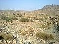 Navidhand new 328 - panoramio.jpg