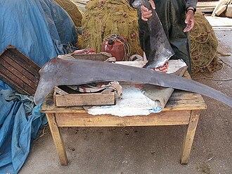 Nea Kios - A fisherman in Nea Kios displays his catch.