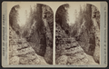Near Mystic Gorge, looking down, by McIntosh, R. M., b. 1823.png