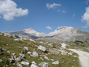 Fanes Alpe, Dolomiten: v.l.n.r: L Ciaval, Zehner, Neuner