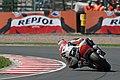 Nicky Hayden 2007 Sachsenring.jpg