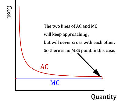 A graph to show the situation of no Minimum Efficient Scale (MES) point in a market that the marginal cost is low and constant.