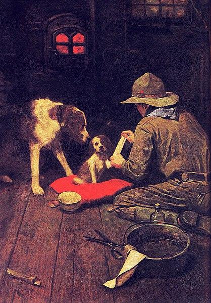 Image Result For Golden Rule Dog