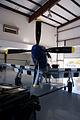 North American TP-51D-25-NT Mustang Crazy Horse LNose Stallion51 19Jan2012 (14797329907).jpg