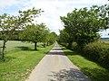 Northfield House farm road - geograph.org.uk - 1399791.jpg