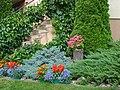 Nowogród-kwiaty na skalniku koło domu - panoramio (1).jpg