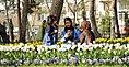 Nowruz 2018, Mellat park, Mashhad (13970107000439636577628190445696 28719).jpg