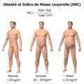 Obésité et IMC.png