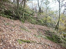 Oberthal-Teufelskanzel-20081026-08.jpg