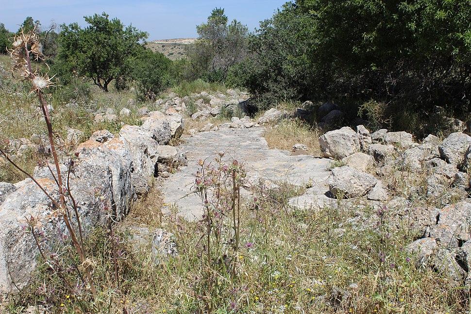 Old Beit Nattif - Beit Gubrin road