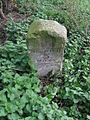 Old Milestone - geograph.org.uk - 1254728.jpg