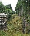 Old Railway Route to Callander - geograph.org.uk - 533536.jpg