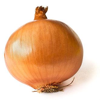 Yellow onion - Yellow Onion