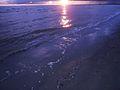 Pärnu ranna kallas päikeseloojangul.JPG