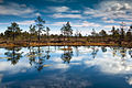 Põhja-Kõrvemaa looduskaitseala..jpg