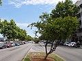 PALMA de MALLORCA, AB-026.jpg
