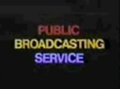 PBS network color words logo.png