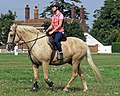 Palomino horse on Matching Green village green, Essex, England 2.jpg