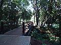 Parque Vitória - Cascavel 05.JPG