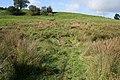 Pasture near Branston - geograph.org.uk - 998159.jpg
