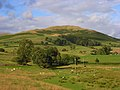Pastures, Sedbergh - geograph.org.uk - 902154.jpg