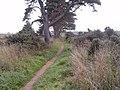 Path - Moss-side to Altonburn - geograph.org.uk - 245636.jpg