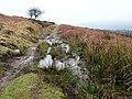 Path around Bal-Mawr - geograph.org.uk - 704153.jpg