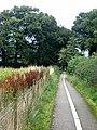 Path at Rickerby - geograph.org.uk - 940841.jpg
