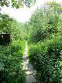 Path in the Chinese Gardens, Rivington-geograph-3984541-by-Phil-Platt.jpg